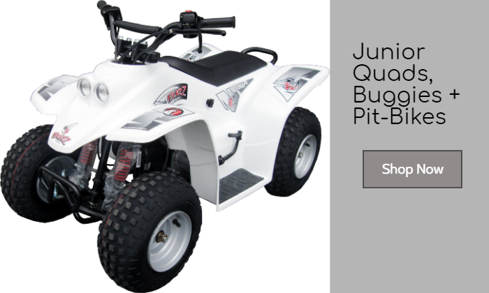 Junior Quads, Buggies & Pit-Bikes